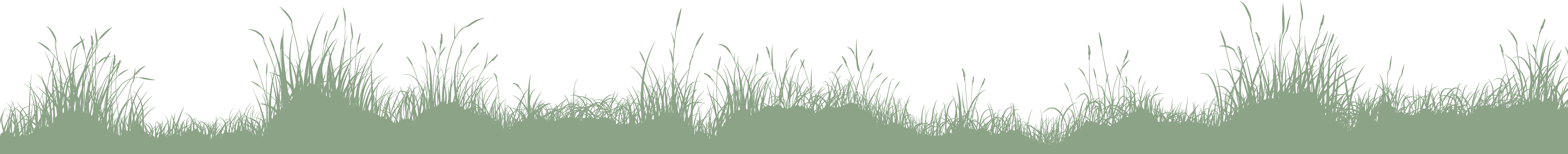 gras-lang-hintergrund